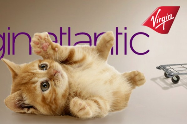 Virgin Atlantic Lost cat